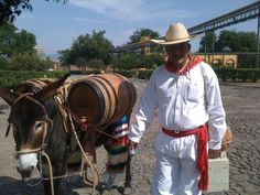 5 places to visit along the Tequila Trail #mexico