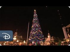 Ever wonder how to set up a 65 foot Christmas tree?  Here's a fun time lapse of the cast members installing the massive tree at the Magic Kingdom!