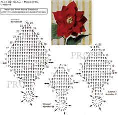 Crochet poinsettia chart pattern