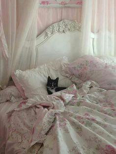 Shabby chic kitty