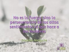 Cita Friedrich Nietzsche, Frases, Feelings, Life
