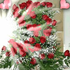 c622f4_73431e.gif (420×420) Corazones Gif, Rose Images, Beautiful Roses, Happy Mothers Day, Christmas Wreaths, Presents, Animation, Wallpaper, Holiday Decor