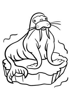 snow bears coloring pages - photo#32