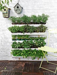 Gutter Gardening-perfect for herbs and lettuce, spinach, strawberries!