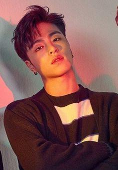 Yg Entertainment, Bobby, Ikon Member, Winner Ikon, Koo Jun Hoe, Jay Song, Ikon Debut, Kim Hanbin, People
