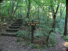 hiking at Jennings Environmental Education Center in Slippery Rock, PA