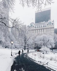An all time favorite from our friend @jssilberman #newyork_instagram #newyork #newyorkcity #ilovenewyork #manhattan #centralpark #snow #winter #photography #nyc #manhattan #newyorker