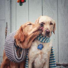 Sweet kisses!
