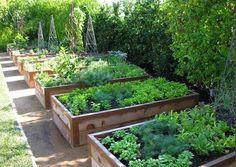 Podwyższone grządki w ogrodzie - inspiracje - MICROGARDEN