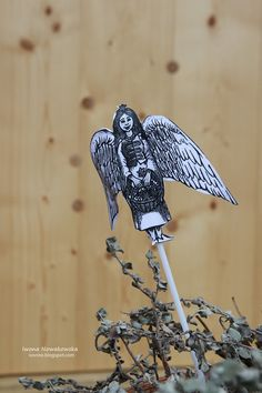 Lanckorona. Angel in town.