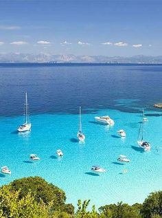 Italy Gulet charter Sardinia by Yacht Boutique Luxury Blue Cruises for family and friends 12 pax with crew Vacation Destinations, Dream Vacations, Vacation Spots, Sailing Holidays, Cruise Holidays, Places To Travel, Places To Visit, Belleza Natural, Greek Islands
