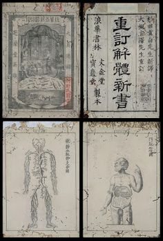 Eclectic historic science and art images from rare books and prints University List, Body Chart, Ancient Scripts, Medicine Student, Kyushu, Body Organs, Chinese Medicine, Antique Books, China