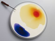 ink in milk in petri dish. like this, but would use black. Petri Dish, Arts And Crafts, Milk, Colours, Dishes, Ethnic Recipes, Eggs, Food, Collection