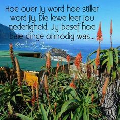 Hoe ouer jy word, hoe stiller word jy. Jy besef hoe onnodig baie dinge was Dad Quotes, Best Quotes, Nice Quotes, Afrikaans Quotes, Inspirational Qoutes, Like You, Things To Think About, Poems, Spirituality
