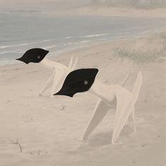 Sinopterus - John Conway