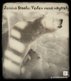 Staalo Jemina – Google+ Baby Polar Bears, Google, Movie Posters, Film Poster, Popcorn Posters, Film Posters, Poster
