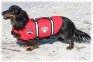 Keep your dog safe around water: 1) Don't leave pets unsupervised—not all dogs are good swimmers. 2) Watch your dog for signs of sunburn or heat stroke, and avoid hot sand/rocks as it can blister paws. 3) Use a dog life jacket. Dogs can also cramp up and get tired. 4) Rinse your dog off to remove chlorine, salt, bacteria or dirt. Remove wet collars to prevent hot spots. 5) Have fresh water, and discourage dogs from drinking pool water, lakes, ponds and rivers to avoid chemicals and…