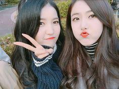 Sowon and sinb Sinb Gfriend, Gfriend Sowon, Gfriend Profile, Cloud Dancer, Latest Music Videos, Ulzzang Couple, Entertainment, Fans Cafe, Tom And Jerry