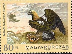The Magyar Posta issued a series of stamps last time in 1983 depicting exclusively Birds of Prey. Description from imperialeagle.hu. I searched for this on bing.com/images