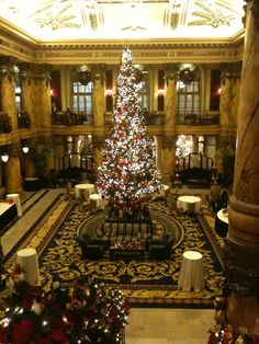 Jefferson Hotel, Richmond, Virginia.  Always beautiful beyond words at Christmas. Miss this so much!