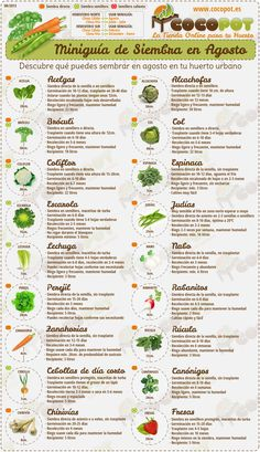 Organic gardening is the exact same as regular gardening except that no synthetic fertilizers or pesticides are used. This can make certain aspects difficult, such as controlling disease, insects, and weeds. Organic gardening also r Fruit Garden, Edible Garden, Herb Garden, Vegetable Garden, Garden Plants, Organic Gardening, Gardening Tips, Agriculture Durable, Do It Yourself Decoration