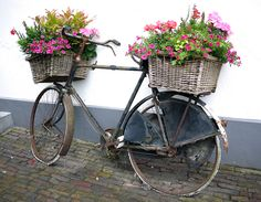 "two baskets along with the bikes, which used to be used to deliver flowers and sometimes act as an ""flower truck""going through the neighborhood selling the flowers! It would be cool decor placed around!"