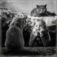 photo: We Are the Cats | photographer: Andy Prokh | WWW.PHOTODOM.COM