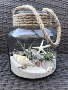 Luft Pflanzen DIY Ideen In Best Plants DIY Ideas And Inspiration For You The post Beste 70 + Air Plants DIY Ideen und Inspiration für Sie appeared first on Home Dekoration. Seashell Crafts, Beach Crafts, Diy And Crafts, Seashell Projects, Beach Themed Crafts, Seashell Art, Mason Jar Crafts, Bottle Crafts, Deco Marine