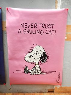 Never trust a smiling cat! This Snoopy Hallmark Poster is listed on eBay for $150. How much would a collector REALLY pay for it? Find out at CollectPeanuts.com.