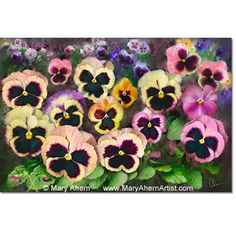 Pansy Field - Painting