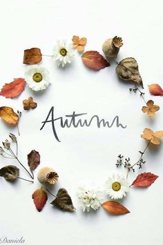 Trendy Ideas Falling In Love Art Beautiful Autumn Tea, Autumn Garden, Hello Autumn, Autumn Fall, Autumn Leaves, Fallen Leaves, Flowers Wallpaper, Fall Wallpaper, Flower Quotes