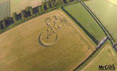Crop Circle: Aparece nas áreas de Badbury (Dorset - Reino Unido) 17 de junho 2014