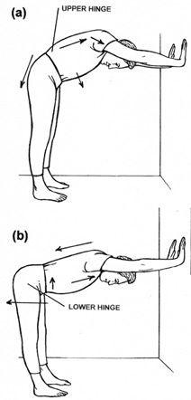 Iyengar Yoga: National Association of the United States