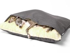 Charley Chau Dog Snuggle Beds (also known Tunnel Dog Beds or Terrier Tunnels), designed for dogs that love to snuggle under blankets - the cosiest dog bed ever.