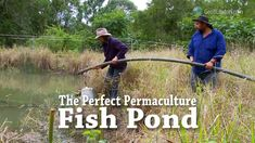 Perfect Permaculture Fish Pond. Geoff Lawton shows you how to complete a Fishpond