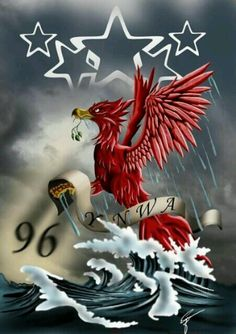 LFC fans tribute we will never forget