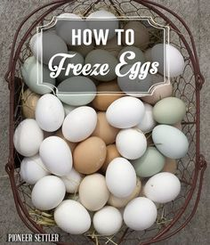 Learn how to freeze eggs so you always have preserved eggs on hand. Knowing to freeze raw eggs is just one of the many skills we use on our homestead daily! Freezer Cooking, Freezer Meals, Freezer Recipes, Canning Recipes, Egg Recipes, Recipies, Freezing Eggs, Huevos Fritos, Dehydrated Food