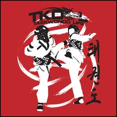 SPIN KICK SPARRING YOUTH TAEKWONDO T-SHIRT / Taekwondo Martial Art Tee Shirt / Taekwondo Martial Art Tee Shirt
