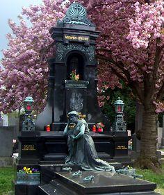 zentralfriedhof - Google Search
