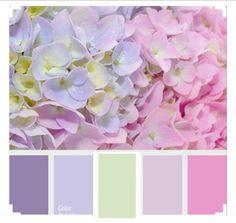 Color palette hydrangeas