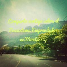 Que hago en Roru? Emprendedores en Monterrey http://roru.org