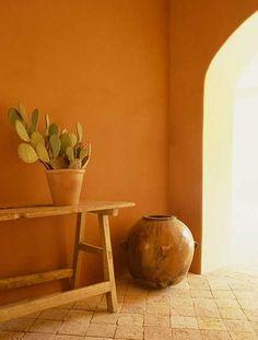 Southwestern Decor. Potted Cactus Plant. Earthen Pot.