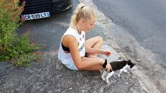 The animal whisperer. That's what we call our daughter Sienna. She has this magnetism towards animals which was very apparent during our holiday. Cats and dogs would just appear out of… Boston Terrier, Dog Cat, Africa, Daughter, Chic, Holiday, Dogs, Animals, Shabby Chic