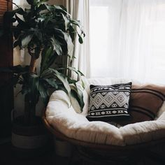 Comfort level . Finally got hold of a pier1 papasan chair for our bay window. The perfect little reading nook for when the early morning light peaks through the curtains. That's if the cat doesn't steal it for herself.