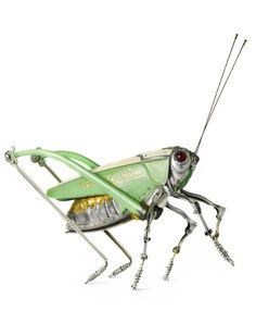 Grasshopper - Sold