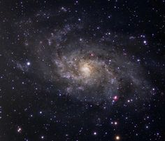 M33: Triangulum Galaxy from my backyard observatory : Claustonberry || ourspaceisbeautiful.tumblr.com