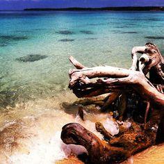 #travel Playa Blanca #Cartagena #Colombia