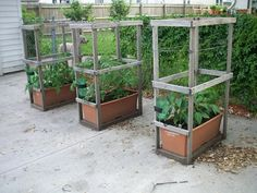 Great sturdy cheap DIY trellises for earthboxes
