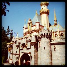 14) be responsible without ever really growing up (i.e., Disneyland4life)