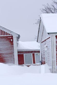 The cottage sleeps hibernate ...    In Wirkkula Village  Kuusamo Finland   Photo By Aili Alaiso Finland